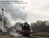 It is dusk as 45231 passes the Sheffield Park Advance Starter with a Santa Special.  14.12.2013  8534