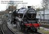 45231 at Sheffield Park.  14.12.2013  8515