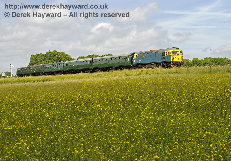 33103 Swordfish amongst the buttercups south of New Road Bridge.  30.06.2013  9274