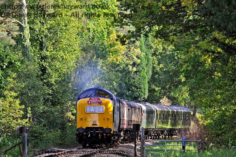 Deltic 40th Anniversary Weekend 061017 16310 E2