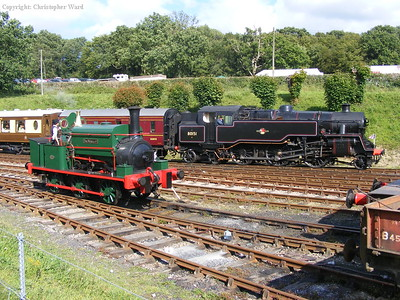 Contrasting tank engines at Horsted