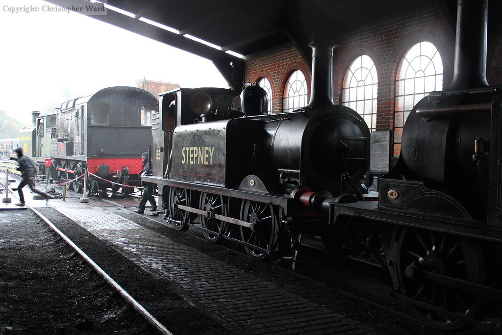 Stepney in the shed