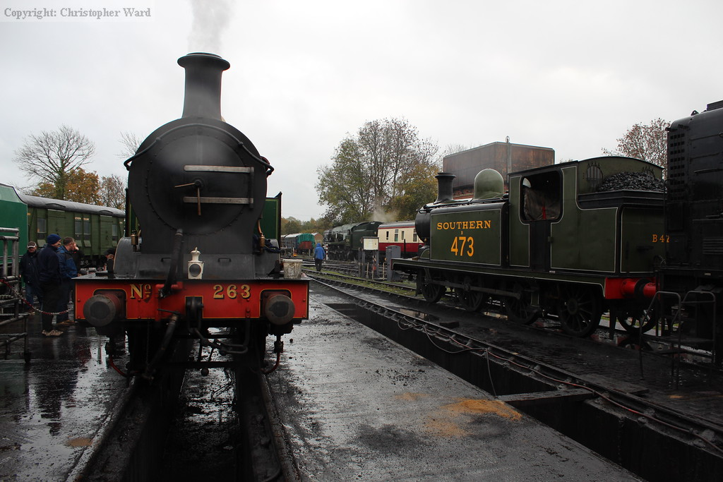 Pre-grouping tank engines to greet the visitors