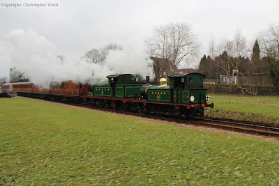 178 and 263 provide a pleasing pairing even in the gloom