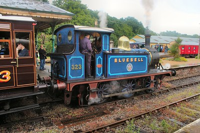 Bluebell brews up to leave