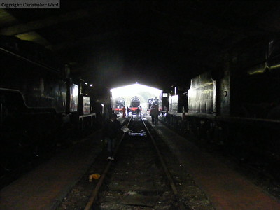 A view through the shed