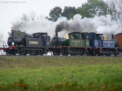 Stepney leads the erstwhile Nettle and Bluebell into Horsted Keynes
