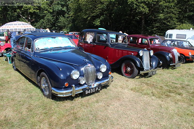 Some of the cars on display in the field