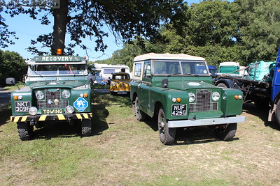 A couple of pristine Land Rovers in the field