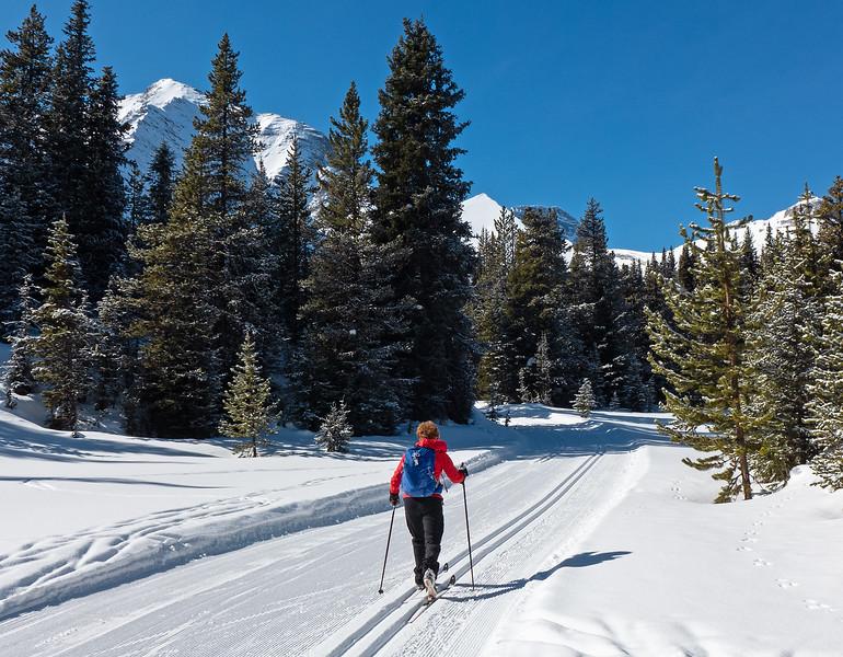Elk Pass trail.