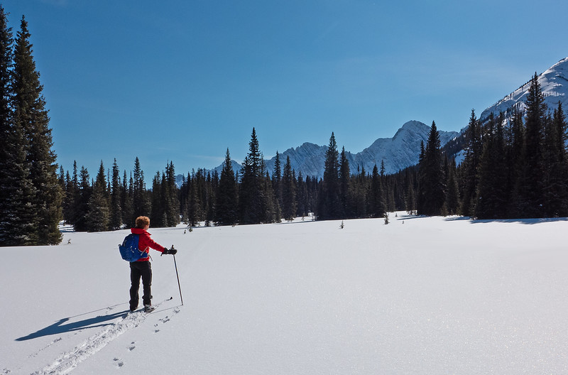 West Elk Pass meadows at the BC border.