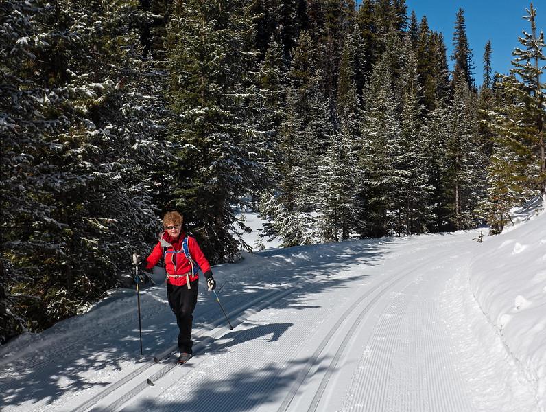 Elk Pass trail along Fox Creek. Perfect!
