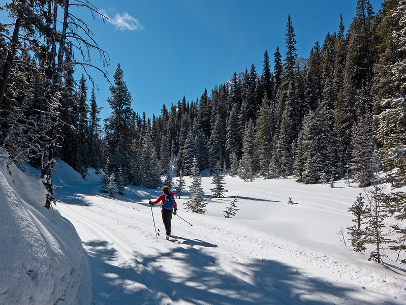 Cruising by the upper Fox Creek meadows on Elk Pass trail.
