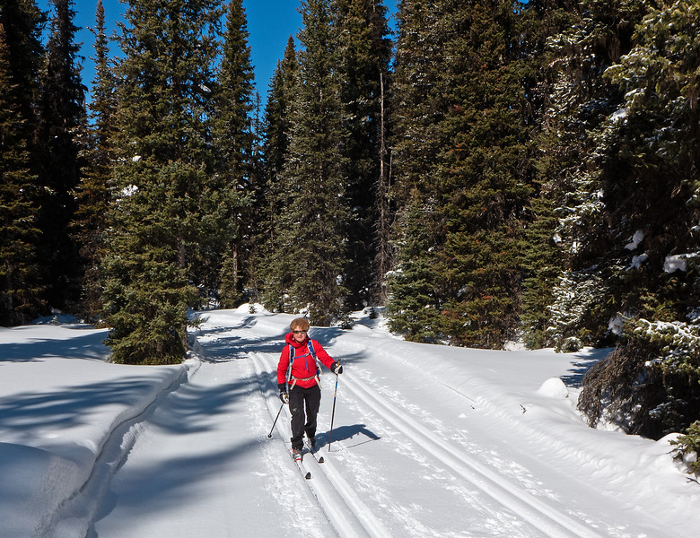 A few cm's of soft snow over the grooming made for easy skiing on the fun descent from Blueberry, and silky smooth tracks.