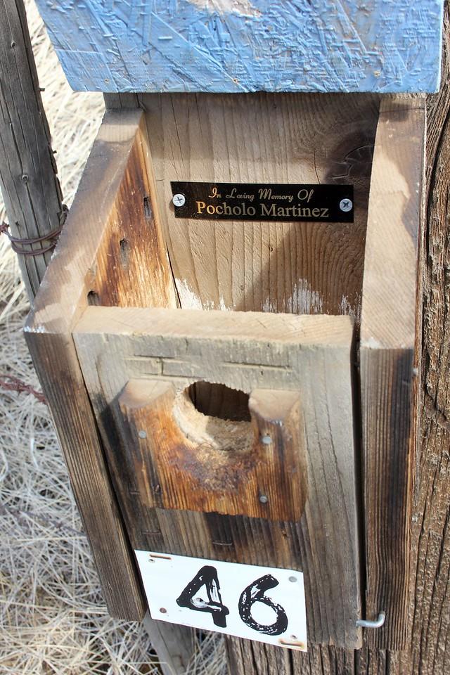 A different view of Pocholo's memorial box