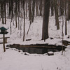 Our Pond in Winter