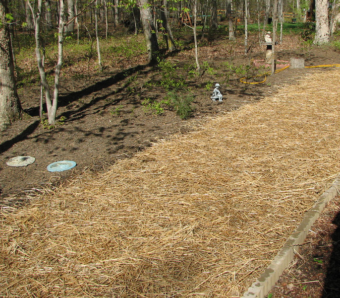 Rear Area Seeded for Grass - Our Little Patch of Green