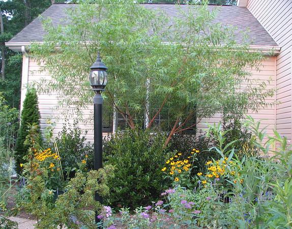 2006 Garden at Bluebird Cove