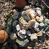 Habitat for Lizards, Salamanders and Small Toads - Rock Pile - We Add to It As We Find Rocks in the Soil