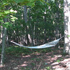 View of Hammock From Behind Pond