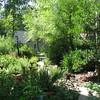 Front Yard View of Garden