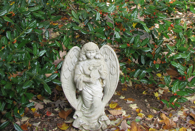 Angel of Music With Holly Berries