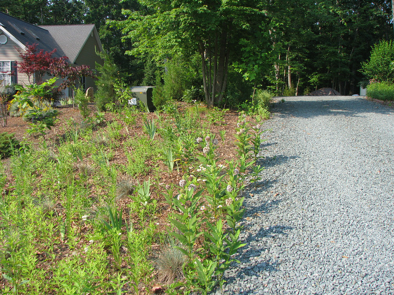 Driveway Recently Redone With Gravel - Notice Distance Between Homes