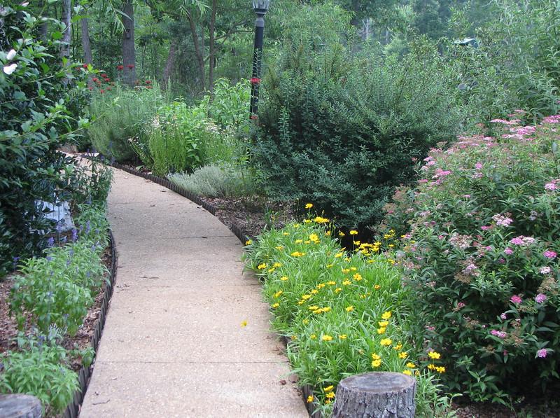 First Day Of Summer Garden
