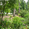 Front Yard Garden_2