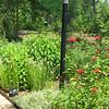 Summer Garden - Walkway Lamp Post