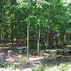 Firepit, Pond, Hammock and Birdfeeder - Rear Yard June 2008