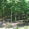 Firepit, Pond, Hammock and Birdfeeder - Rear Yard June 2008