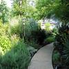 Front Walkway - Bluebird Cove