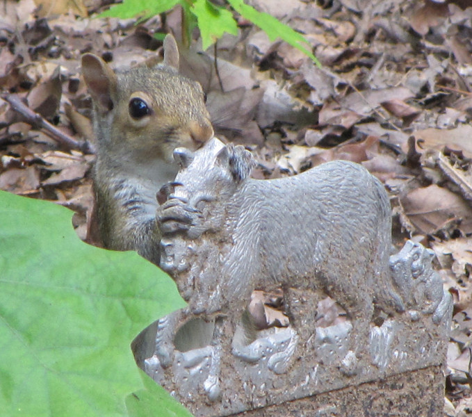 Squirrel Giving a Pewter Cat Sign a Hug