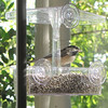 Chickadee on New Feeder for Front Porch Window