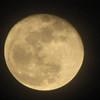 Full Moon at Bluebird Cove