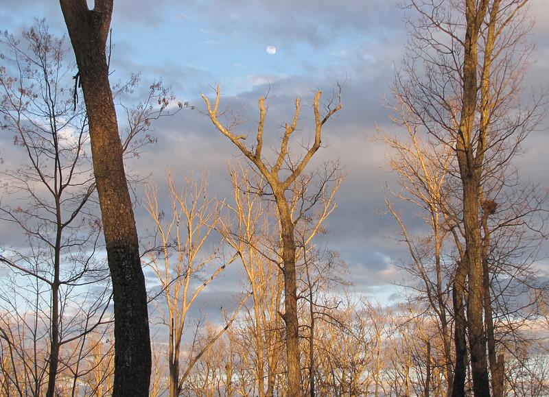 Setting Sun and Moon Rising - Front Yard