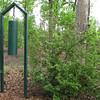 Steel Gong Made By Charlie Allred For Our Alabama Refuge