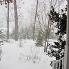 Winter Wonderland at Bluebird Cove 12-19-09