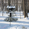 Winter Snow at Bluebird Cove - Back Yard