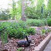 Flower Garden Area Along the Front Walkway