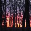 Morning Sunrise 2-9-11