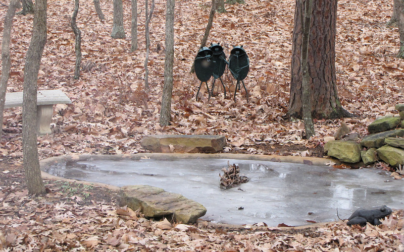 Frozen Pond on New Year's Day