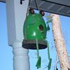 Frog Birdhouse on Front Porch
