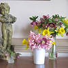 Early Springtime Bouquets From Our Garden - March 2013<br /> Hellebores, Daffodils, Hyacinths
