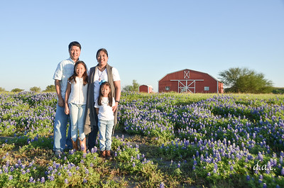 March 30, 2018 - Chin Family Bluebonnets