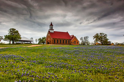 Church & Bluebonnets