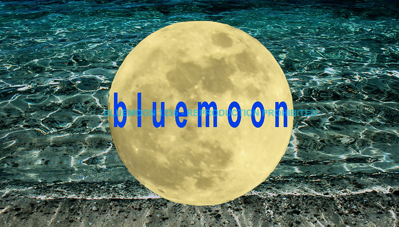 "bluemoon1236;  <a href=""http://www.bluemoon1236.smugmug.com"">http://www.bluemoon1236.smugmug.com</a> ,Bluemoon Fine Photography"