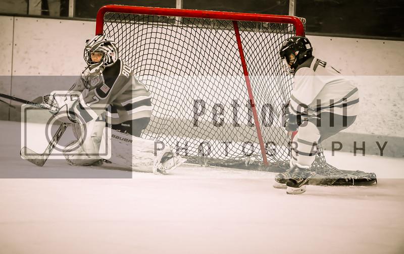 2016 Blues Hockey Squirt CSDHL