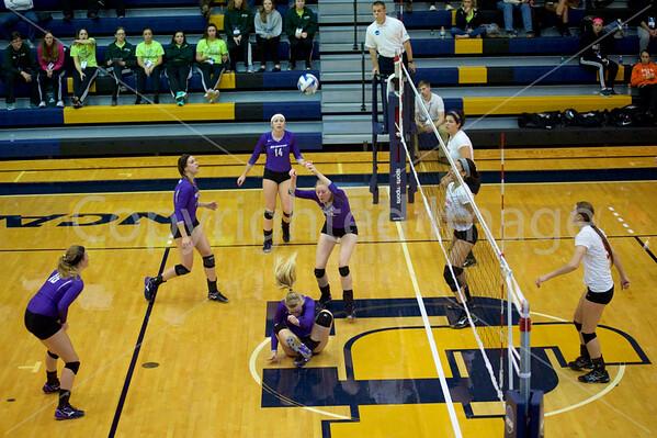 Bluffton Volleyball 111315 Wittenburg